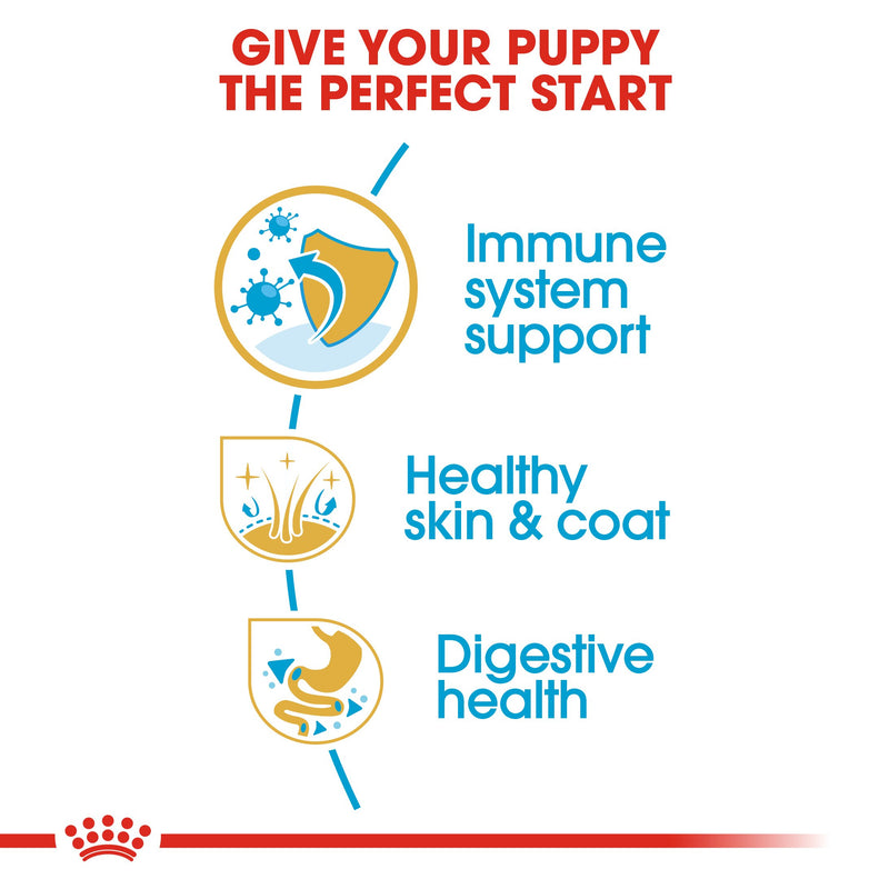 Royal Canin Golden Retriever Puppy (17KG) - Dry food for puppies up to 15 months - Amin Pet Shop