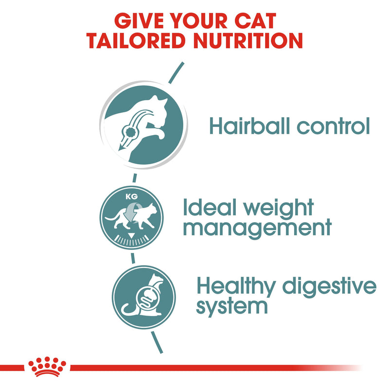 Royal Canin Hairball care (85gm\ Pouch) - Wet food for adult cats - Helps reduce hairball formation - Amin Pet Shop