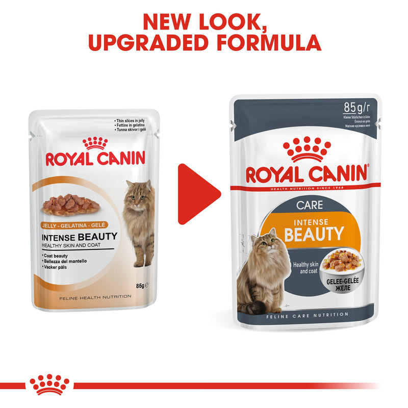 Royal Canin Intense Beauty in Jelly (85gm\Pouch) - Wet food for Adult cats - supports a healthy skin and shiny coat - Amin Pet Shop