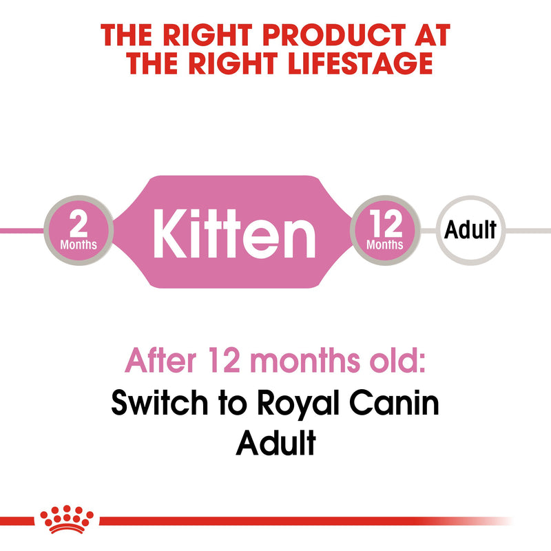 Royal Canin Kitten In Jelly (85gm\ Pouch) - wet food for kittens up to 12 months - Amin Pet Shop