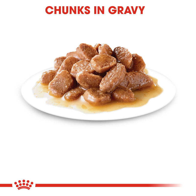 Royal Canin Instinctive in Gravy (85gm\ Pouch) - Wet food for adult cat - Amin Pet Shop