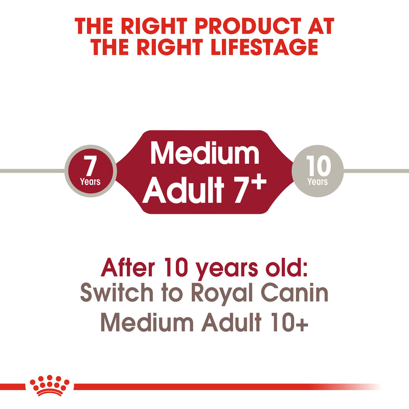 Royal Canin Medium Adult 7+ (4KG) - Dry food for medium dogs from 11 to 25 KG. from 7 to 10 years old