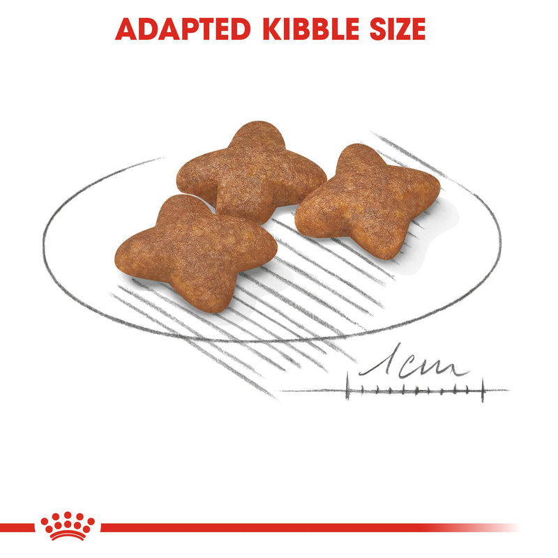 Royal Canin Mini Adult (2KG) - Dry food for small dogs up to 10 KG - form 10 months to 8 years - Amin Pet Shop