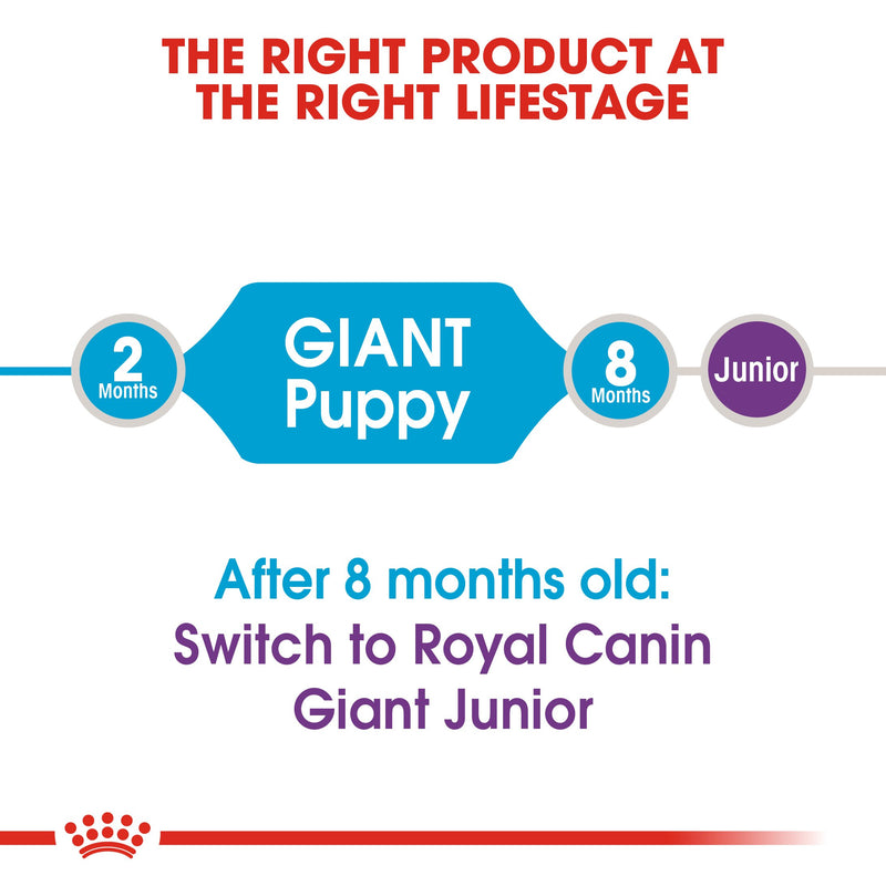 Royal Canin Giant Puppy (15 KG) - Dry food for giant dogs. Adult weight from 45 KG and over - from 2 to 8 months old - Amin Pet Shop