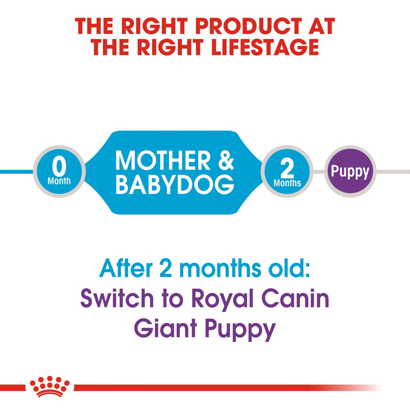 Royal Canin Giant Starter Mother & Babydog (15 KG) - Dry food for giant puppies. Adult weight from 45 KG and over - Mother during gestation and lactation - Weaning puppies up to 2 months - Amin Pet Shop