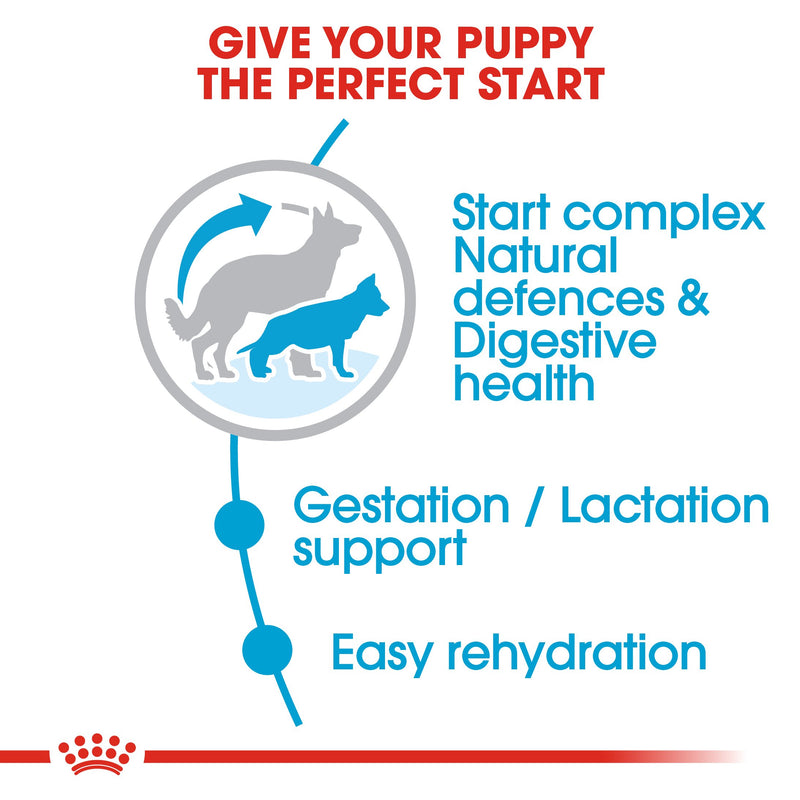 Royal Canin Maxi Starter Mother and Babydog (15 KG) - Dry food for large puppies - Adult weight between 26 and 44 KG. Mother during gestation and lactation - Weaning puppies up to 2 months - Amin Pet Shop