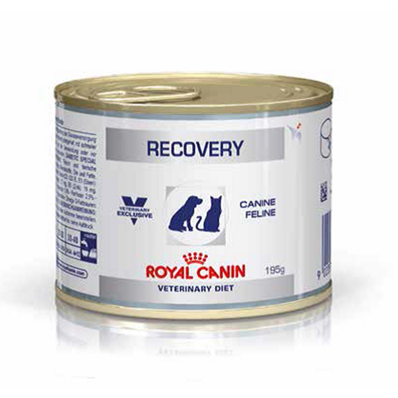 Royal Canin Recovery (195 gm) – Wet food for convalescence intensive care