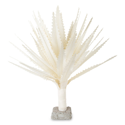 Furbish Studio - Maguey Natural Canvas Plant