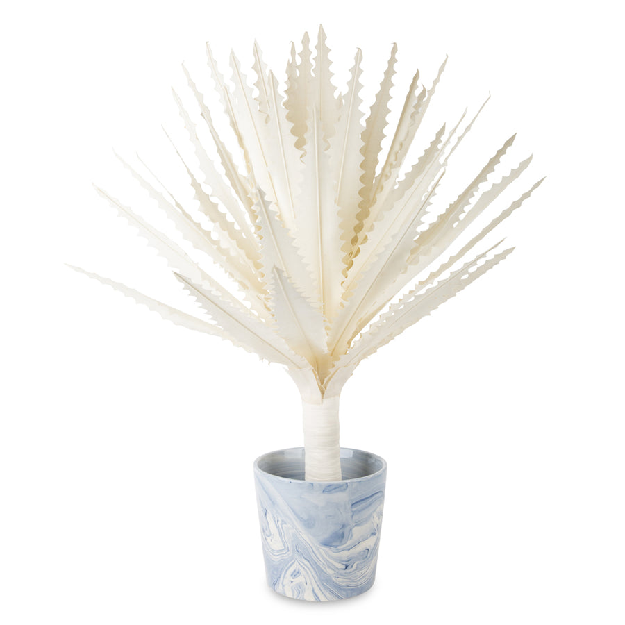 Furbish Studio - Maguey Natural Canvas Plant shown in a blue and white swirled pot