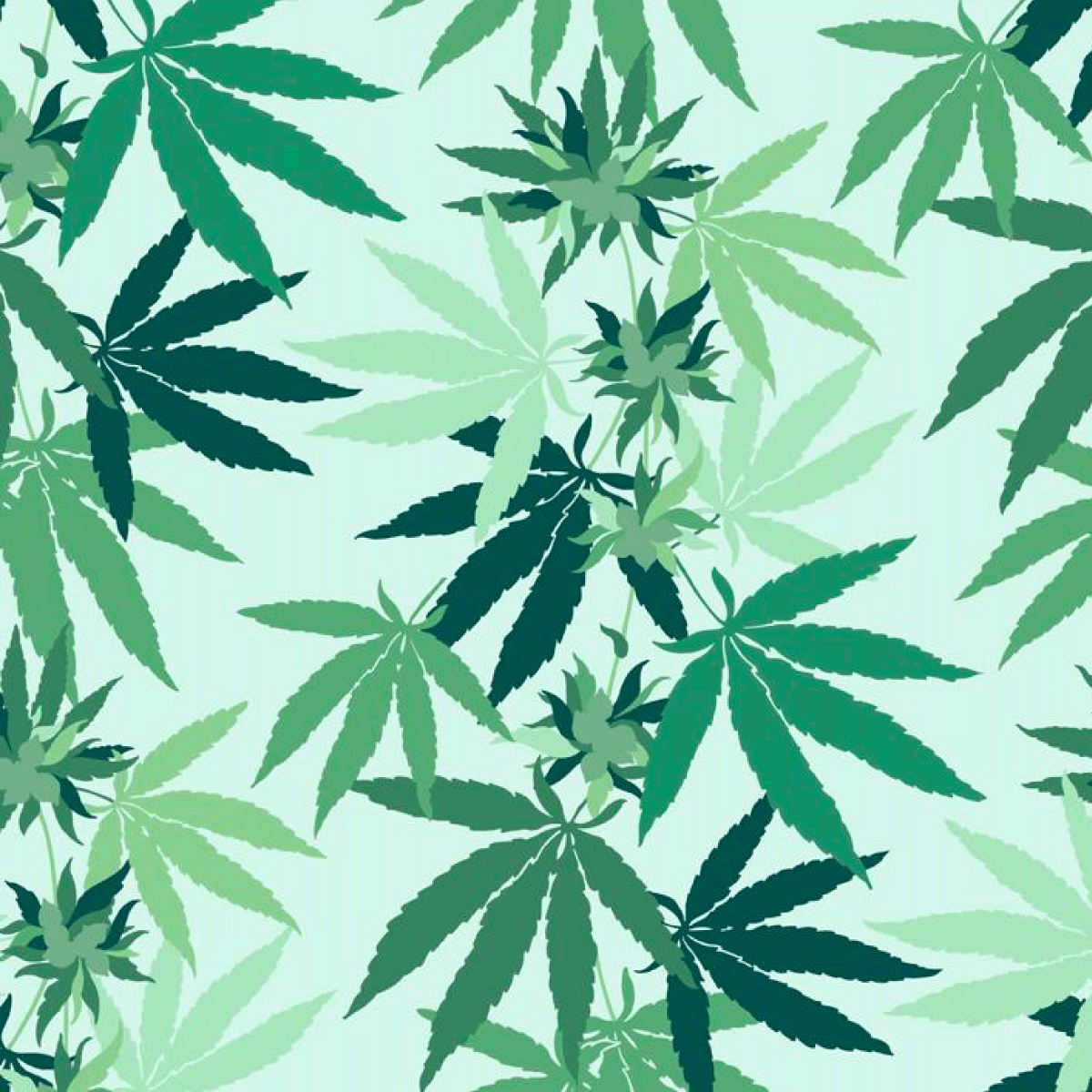 In The Weeds Removable Wallpaper - Mint