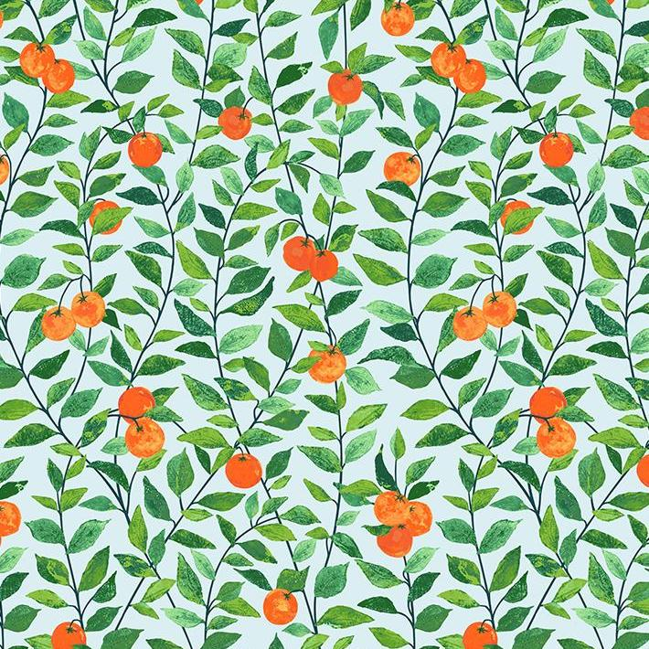 Orange Grove Wallpaper - Sky