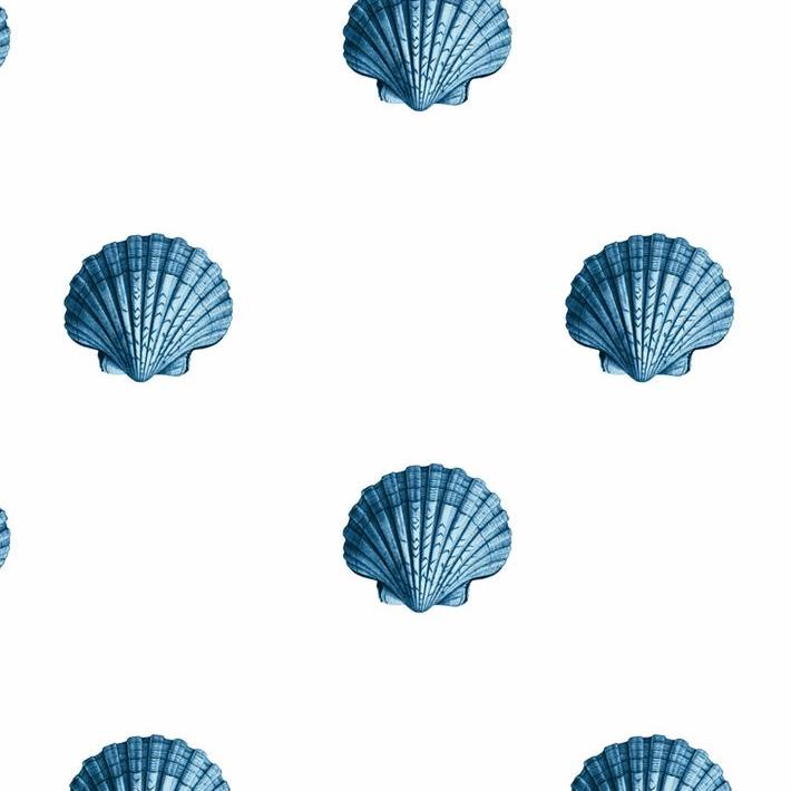 Seashells Wallpaper - Blue