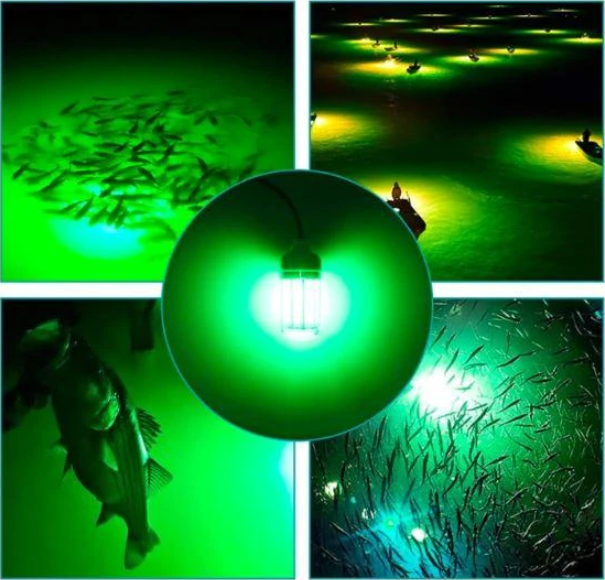 🌟HOT SALE - 🐟FISHING LIGHT【💲50% OFF ONLY TODAY】