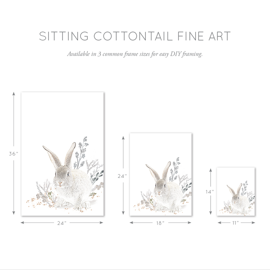 Cottontail Sitting Bunny Wall Art