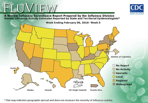 US Flu Map Feb 6