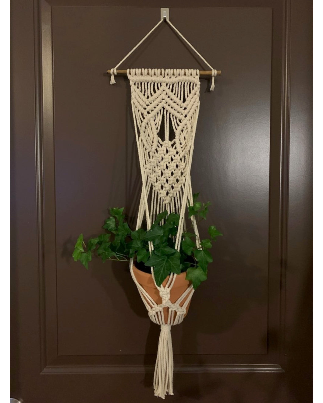 Special Edition Large Plant Hanger