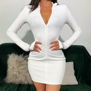 Casual Embroidery Knit Rib Bodycon Dress