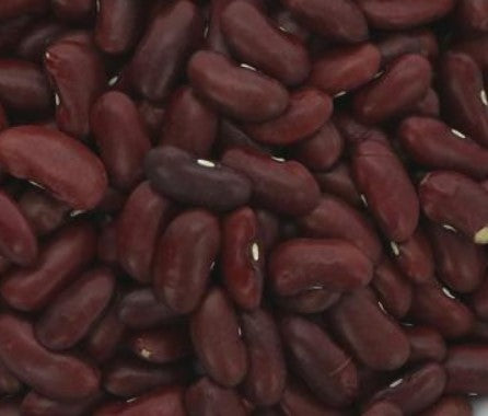 Red Kidney Beans - Organic