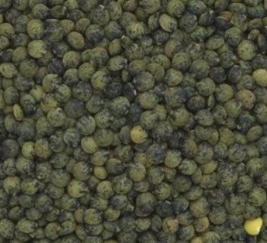 Dark Green Speckled Puy Type Lentils