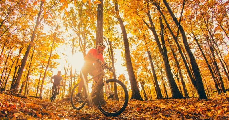 Asheville, NC: Fall Colors Hiking and Mountain Biking Weekend - October 10-13