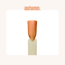 Load image into Gallery viewer, autumn.