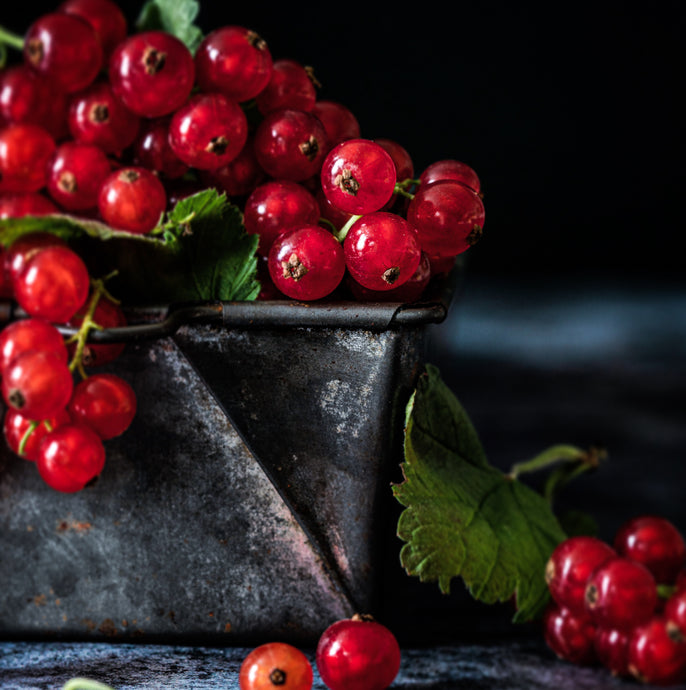 1-to-1 FOOD STYLING & PHOTOGRAPHY TRAINING, JULY 2020