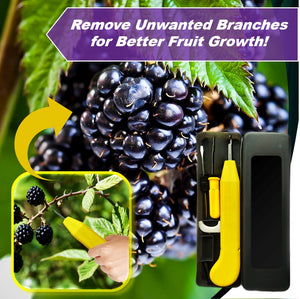 AgriGrow Pruning Fruiting Tools