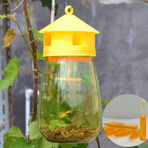 PestOff! Fruit Fly Catcher Trap