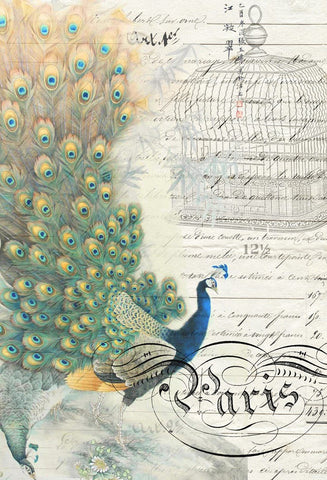 Peacock Ephemera Left Decoupage Paper