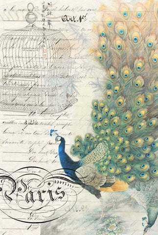 Peacock Ephemera Right Decoupage Paper