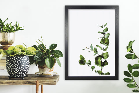 a botanical print for a home office