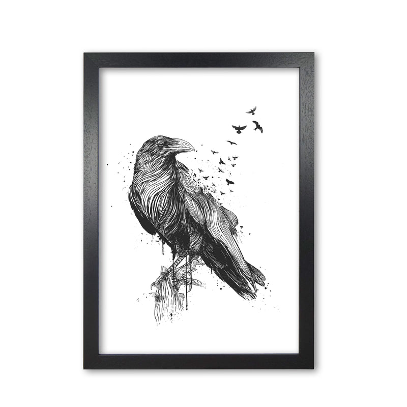 Born To Be Free Raven B&W