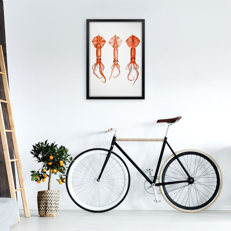 Squids - Watercolor Animals Art Print by Gal Design A2 White Frame