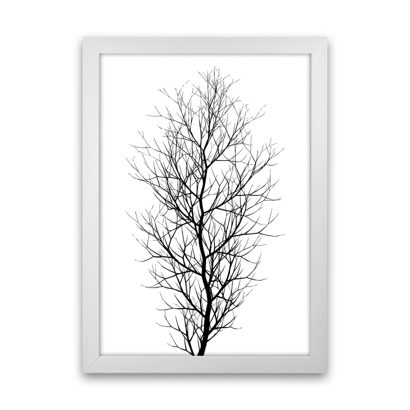 The Tree - BLACK Contemporary Art Print by Kubistika