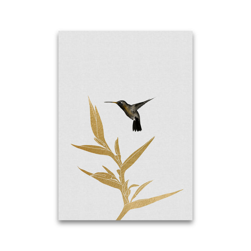 Hummingbird & Flower II Print By Orara Studio