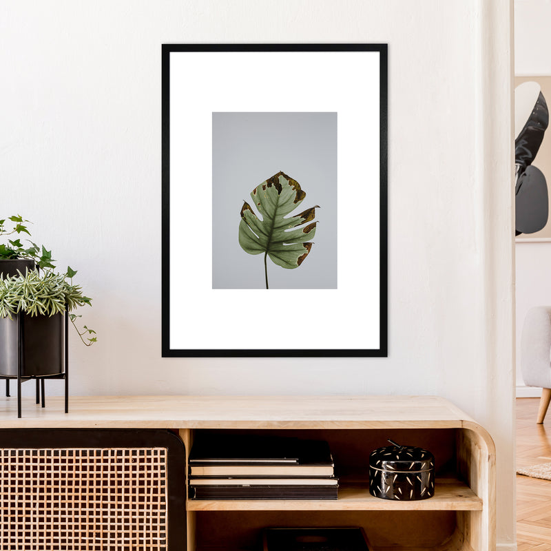 Old Leaf Grey Box  Art Print by Pixy Paper A1 White Frame