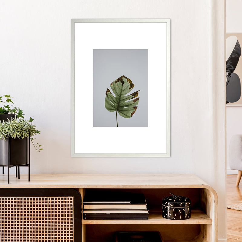 Old Leaf Grey Box  Art Print by Pixy Paper A1 Oak Frame