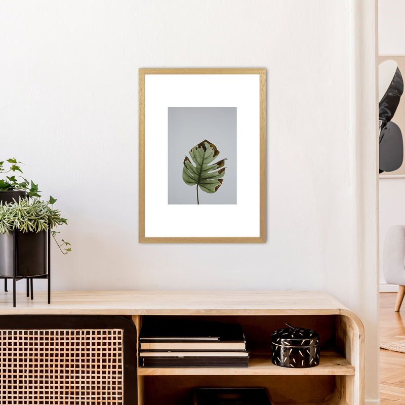 Old Leaf Grey Box  Art Print by Pixy Paper A2 Print Only