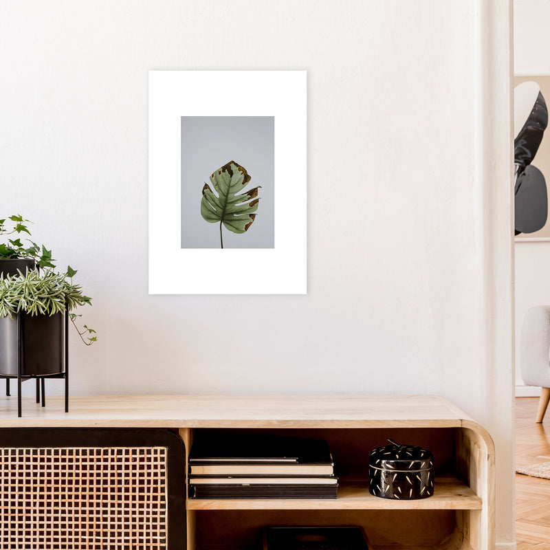 Old Leaf Grey Box  Art Print by Pixy Paper A2 Black Frame