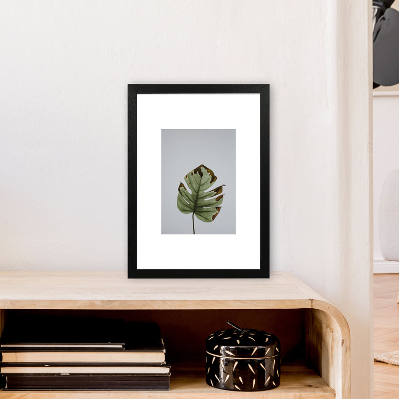 Old Leaf Grey Box  Art Print by Pixy Paper A3 White Frame