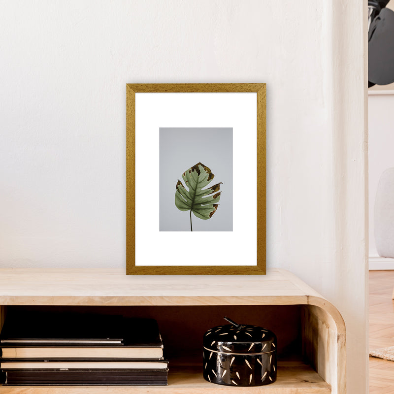 Old Leaf Grey Box  Art Print by Pixy Paper A3 Print Only