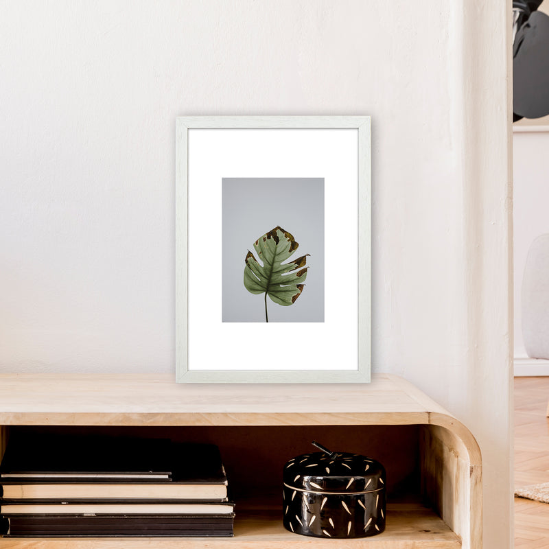 Old Leaf Grey Box  Art Print by Pixy Paper A3 Oak Frame