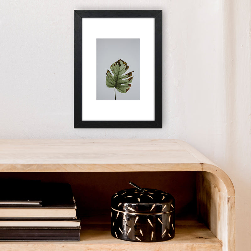 Old Leaf Grey Box  Art Print by Pixy Paper A4 White Frame