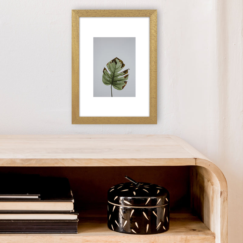 Old Leaf Grey Box  Art Print by Pixy Paper A4 Print Only