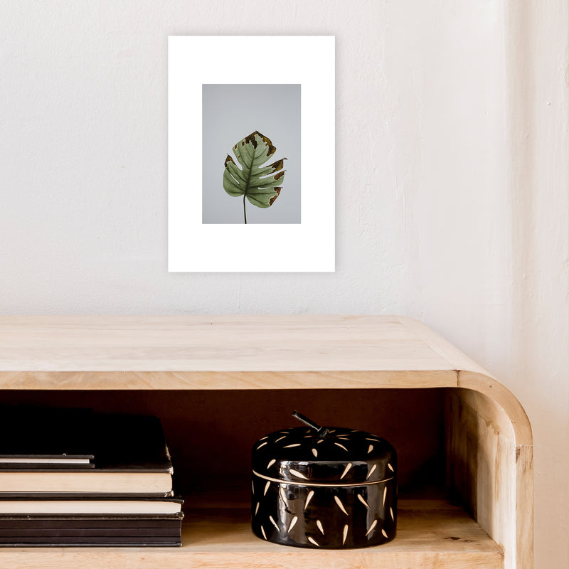Old Leaf Grey Box  Art Print by Pixy Paper A4 Black Frame