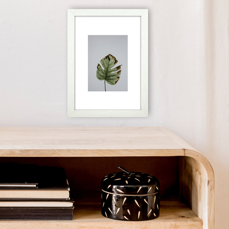 Old Leaf Grey Box  Art Print by Pixy Paper A4 Oak Frame