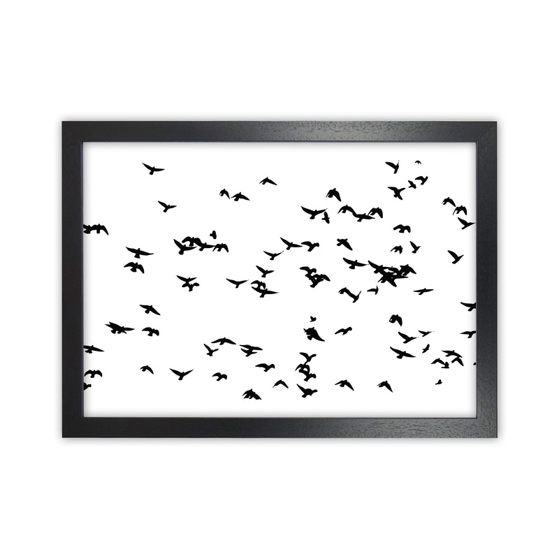 Flock Of Birds Landscape Art Print by Pixy Paper Black Grain