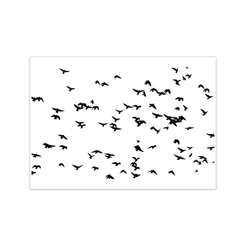 Flock Of Birds Landscape Art Print by Pixy Paper Print Only