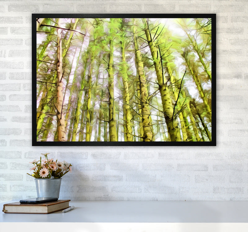 Woodland A1 White Frame