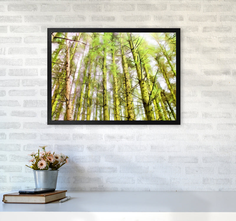 Woodland A2 White Frame